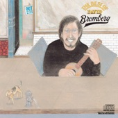 David Bromberg - Send Me to the 'lectric Chair