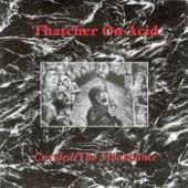 Thatcher On Acid - Fly