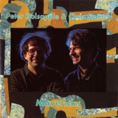 Peter Holsapple & Chris Stamey - Haven't Got the Right (To Treat Me Wrong)