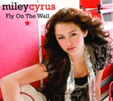Fly On the Wall (2 Track Single) - Single