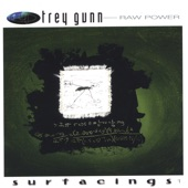 Trey Gunn - Hawaii 2 0h