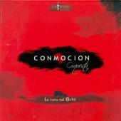 Conmoción Orquesta - Sabor