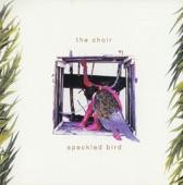 The Choir - Amazing