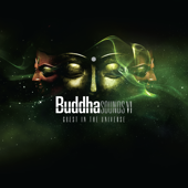Buddha Sounds Vol. 6: Guest in the Universe