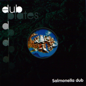 Love Your Ways - Salmonella Dub