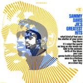 Sammy Davis Jr. - Talk To The Animals