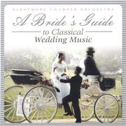 Pachelbel's Canon in D - Barrymoore Chamber Orchestra - Barrymoore Chamber Orchestra