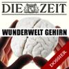 Die Zeit - Wunderwelt Gehirn (DIE ZEIT) Grafik