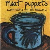 Meat Puppets - Unexplained