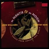 John Williams - Carolan's Concerto