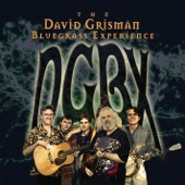 The David Grisman Bluegrass Experience - I'm Rolling On