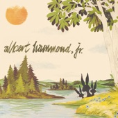 Albert Hammond, Jr. - In Transit