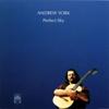 Perfect Sky - Andrew York