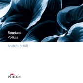 3 Salon Polkas, Op. 7: No. 2 in F Minor artwork