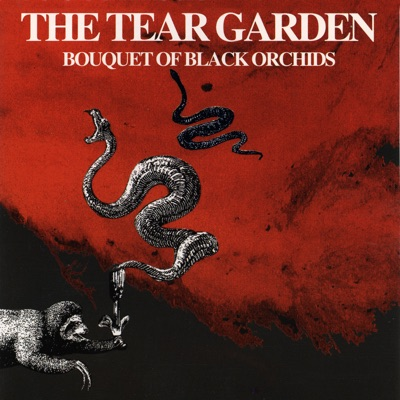 Bouquet of Black Orchids - The Tear Garden