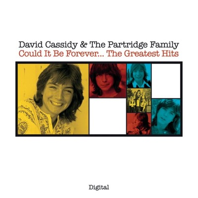 Could It Be Forever...The Greatest Hits - The Partridge Family