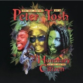 Peter Tosh - Fools Die (Album Version)
