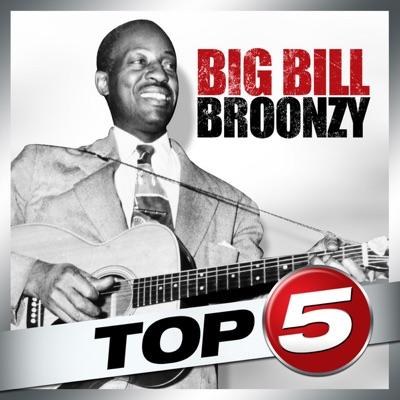 Top 5: Big Bill Broonzy - EP - Big Bill Broonzy