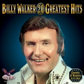 Billy Walker - Funny How Time Slips Away