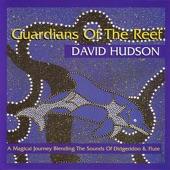 David Hudson - Dolphin Journey