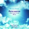 Latvian Radio Choir, Sigvards Klava & Sinfonietta Rīga - Mass: Benedictus artwork