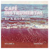 Bar & Hotel Music - Volume 5 Karaoke