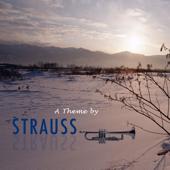 Josef & Johan Strauss Themes
