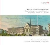 Sonata No. 3 for Violin and Keyboard in E major, BWV 1016 (arr. F. David): IV. Allegro artwork