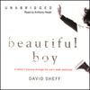 David Sheff - Beautiful Boy: A Father's Journey through His Son's Meth Addiction (Unabridged)  artwork