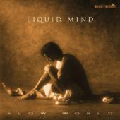 Liquid Mind II: Slow World