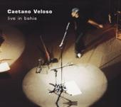 Caetano Veloso: Live In Bahia