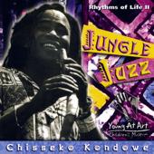 Kalimba-speak- Introducing the Kalimba, the African Thumb Piano