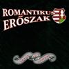 Romantikus Erőszak - Előre mind Pesti Srácok artwork