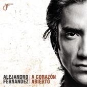 Alejandro Fernández - Lo que pudo ser (Album Version)