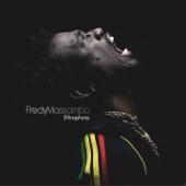 Fredy Massamba - Zonza
