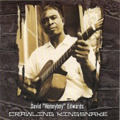 "David ""Honeyboy"" Edwards - Long Tall Woman Blues"