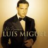 Luis Miguel - Toda una Vída artwork