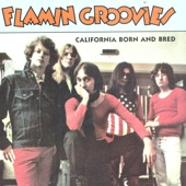 The Flamin' Groovies - Golden Clouds