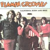 The Flamin' Groovies - Hangin' Around