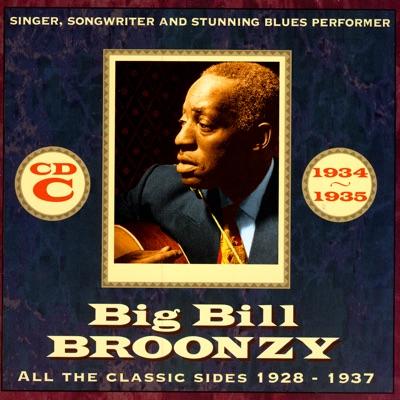 All the Classic Sides 1928 - 1937 CD C - Big Bill Broonzy