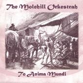 The Molehill Orkestrah - Love is a Strange Dis-ease