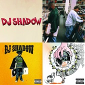 DJ Shadow - Erase You (feat. Chris James)