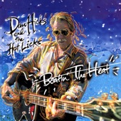 Dan Hicks & The Hot Licks - Doin' It!