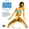 Maximum Ragga, Vol. 4, 2007