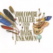 Holcombe Waller - Risk of Change