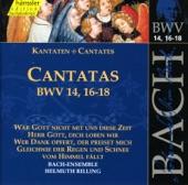 Johann Sebastian Bach - Aria: Gott, bei deinem starken Schutzen (Bass)