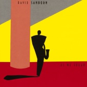David Sanborn - Back Again