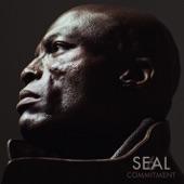 Seal - You Get Me