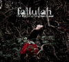 Fallulah - Out of It artwork