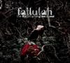 Fallulah - The Black Cat Neighbourhood artwork